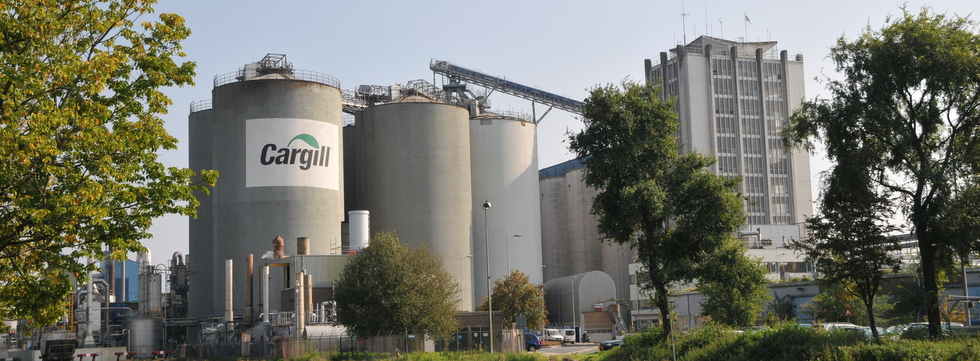 Cargill IGMA